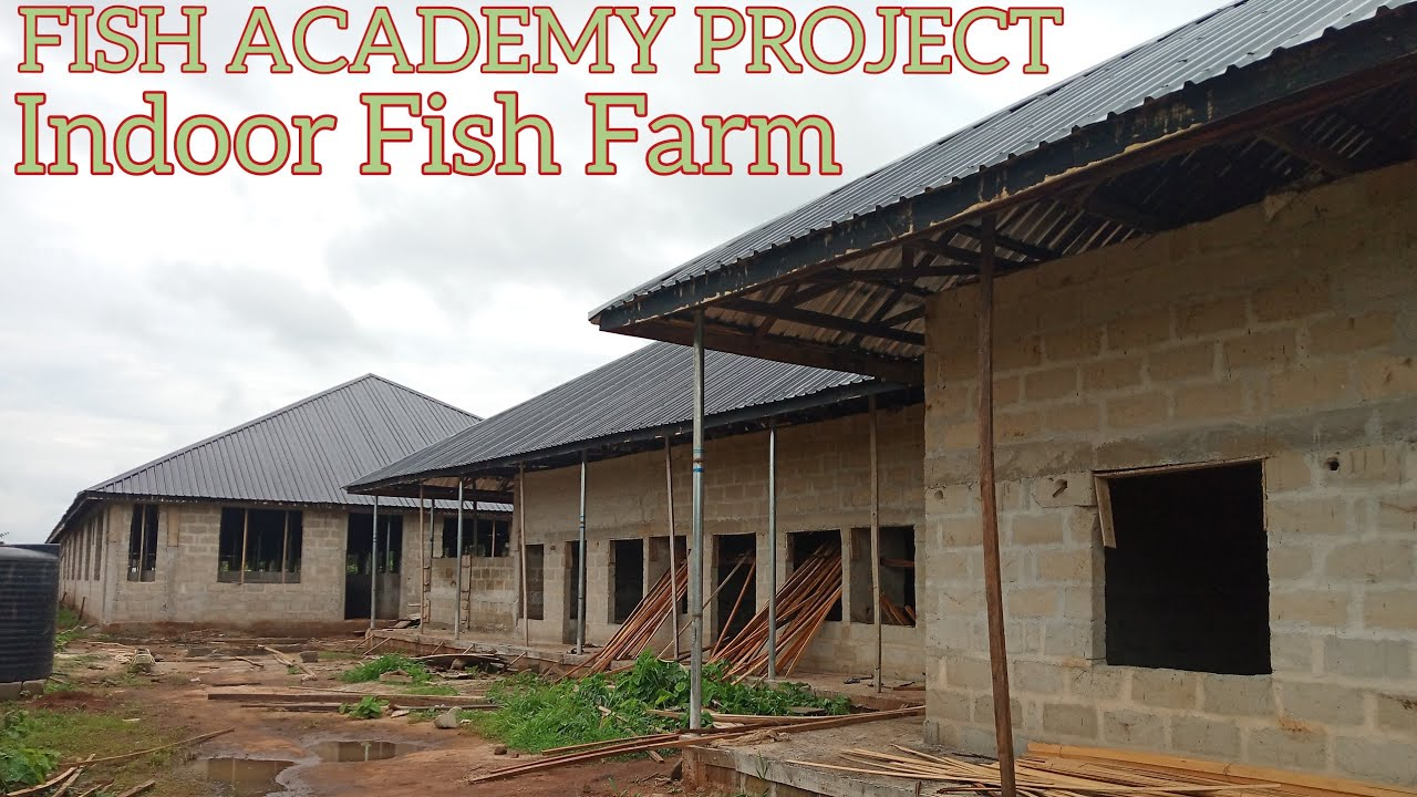 INDOOR FISH FARM CONSTRUCTION IN AFRICA: UPDATE FROM IMO STATE 100K CAPACITY ULTRA-MODERN FISH FARM