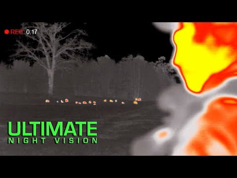 Full Auto Hog Hunting With Night Vision And Thermal