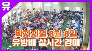 8월 8일 토요일 유방배 만물경매장 실시간 경매