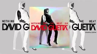 David Guetta   Play Hard ft  Ne Yo  Akon  [New Music ] 2012