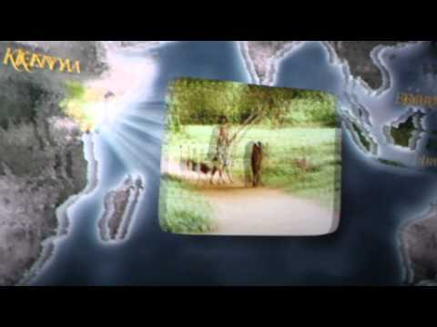 Animale din paduri si munti from YouTube · Duration:  5 minutes 44 seconds