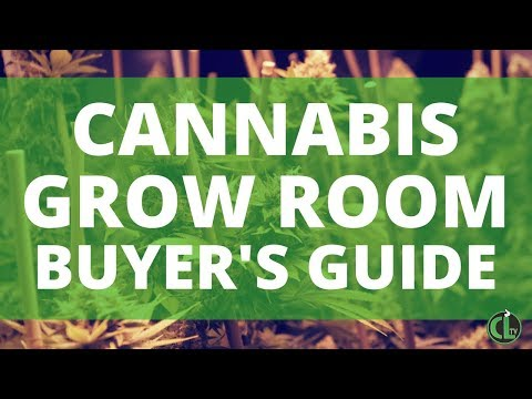 Everything You Need To Grow Indoors (w/ Equipment Guide!)