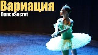 Балет для всех. Вариация из балета Дон-Кихот