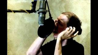 Scott Walker - The Cockfighter