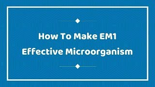 How to Make EM1 - Effective Microorganism