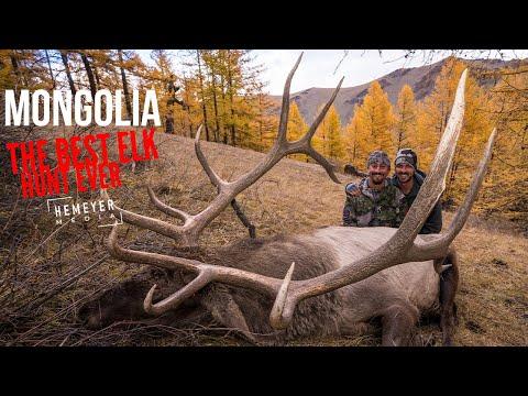 MONGOLIA – THE BEST ELK HUNT EVER