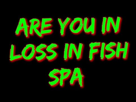 How To Have A Profitable Fish Spa Business And What Things To Avoid From Getting In Loss.