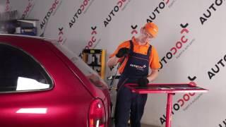 Hvordan skifte Dynamo på VW TOURAN (1T3) - videoguide