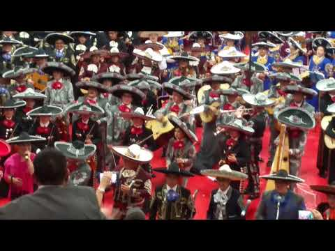 Rayburn middle school Mariachi World Record attempt with other schools