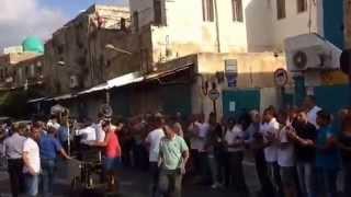 موسى الحافظ عرس عربي في عكا زفة محمد خطيب