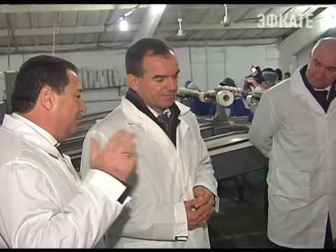 Новороссийская птицефабрика готова увеличить производство. Новости Сочи Эфкате