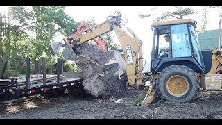 Helping Zach Load A Massive Stump With The Backhoe