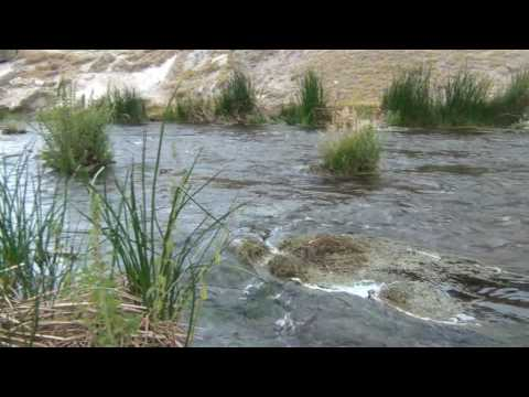 Mammoth Lakes- Hot Springs  Creek Geologic Site
