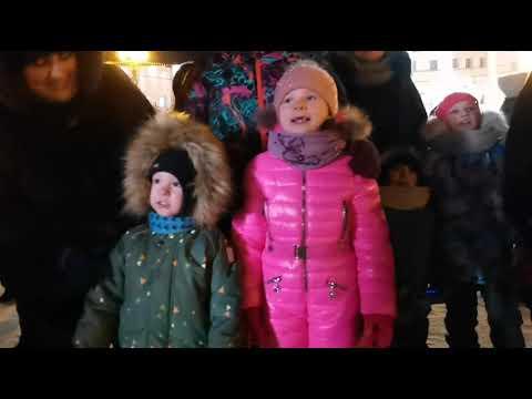 Ёлочка, гори! На главной площади Хабаровска официально зажгли огни на новогодней елке