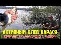 10 карасей, рыбалка с RU KOMPAS / 10 carp fishing from RU KOMPAS