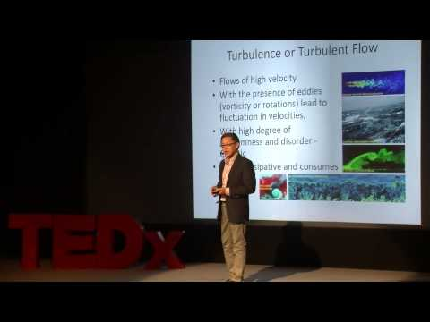 We learn in order to apply | Kai Meng Mok | TEDxYouth@TIS