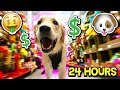 BUYING MY PUPPY EVERYTHING SHE TOUCHES FOR 24 HOURS! (DOG TOY CHALLENGE)