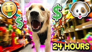 BUYING MY PUPPY EVERYTHING SHE TOUCHES FOR 24 HOURS! (DOG CHALLENGE)