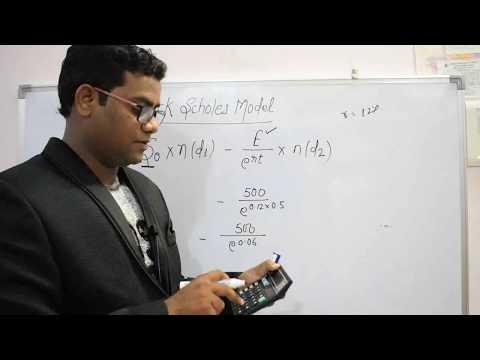BLACK SCHOLES MODEL (BSM PART II) COMPLETE LECTURE CA FINAL BY CA PAVAN KARMELE (Q.56 PM)