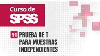 11. Prueba de t para muestras independientes | Curso de SPSS