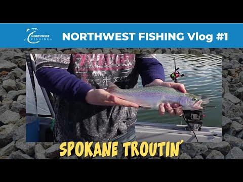 Nonstop Trout Fishing At Lake Spokane | VLOG0001