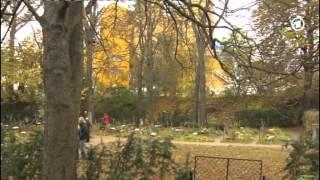 Friedhof der Namenlosen in Wien