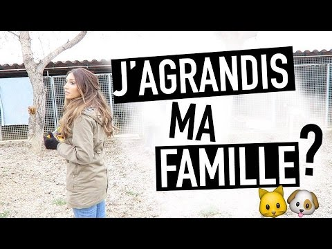 JE LIS PENDANT 24H ! | READATHON VLOG 📚 from YouTube · Duration:  25 minutes 45 seconds