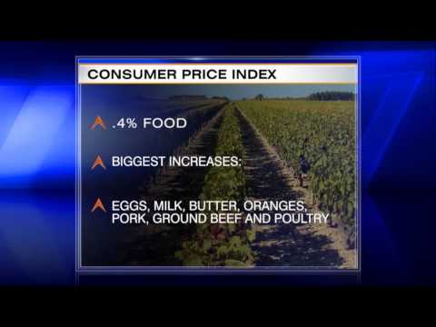 Rising Food, Gas Prices Put Squeeze on Consumers