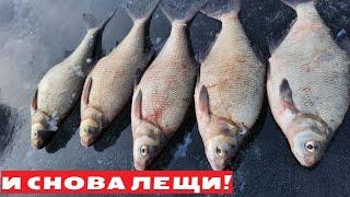 Астрахань Бузан Ахтуба Зимняя рыбалка 2021 Поймал ЛЕЩЕЙ и ПОДЛЕЩИКОВ