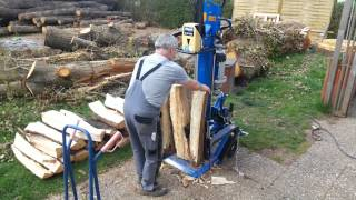 endlich Holzspalter