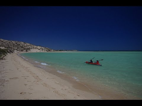Vasco Da Gama 11 Ultimate Review And Tutorial - Swim With The Mantas At Ningaloo Reef