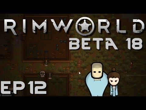 RIMWORLD BETA 18 | Cat Attack | Ep 12 | Let's Play RimWorld Beta 18