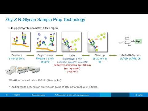 Sample Preparation and Analysis Workflows for Released N-Glycan Analysis of Biotherapeutics