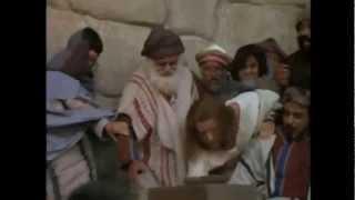 Haiku (Malta) #3 - Kristu Special