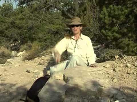 Carbon dating lammas