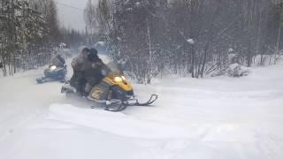 охота на снегоходах в Шеманихе(охота на снегоходах в Шеманихе., 2017-01-23T11:59:48.000Z)