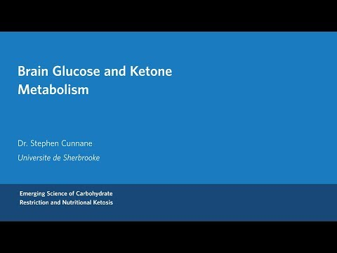 Dr.  Stephen Cunnane - Brain Glucose and Ketone Metabolism