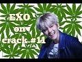 EXO On Crack #11 Baekhyun Is Doing Drugs?!