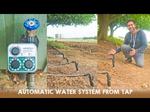 How to Setup Automatic Drip Irrigation from Tap or Faucet