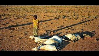 أخبار الصحة: الجفاف يجتاح إفريقيا.. وملايين يواجهون خطر المجاعة