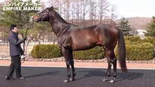 JBBA日本軽種馬協会種牡馬展示会2015-全映像