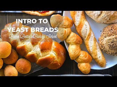 Intro To Yeast Bread (how Yeast Works, Dry Yeast, Active Dry Yeast, Instant Yeast)   Baking School