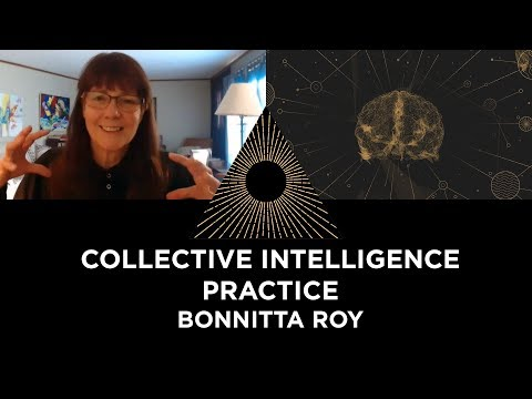 collective-intelligence-practice,-bonnitta-roy