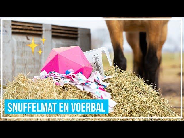 Snuffelmat en voerbal voor paarden!
