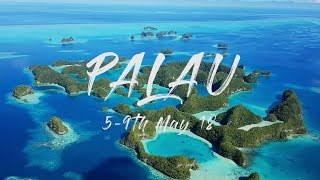 Diving Palau with Sam's Tours 2018