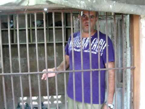MATANZAS CUBA .CAMPEONES DEL CAMPEONATO D FONDO 2009 ROLANDO REYES Y LOS HNOS MESA