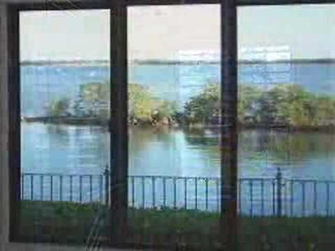 Gulf Waterfront Gem - Gulf Harbors - Tampa Bay Florida