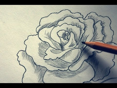 How to draw a very beautiful, 3D, realistic, delicate, detailed ...