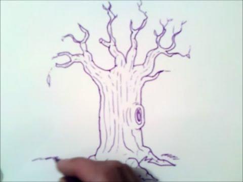 Como Dibujar Un Arbol Sin Hojas Paso A Paso Como Dibujar Un Arbol