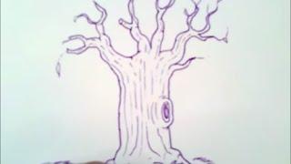 como dibujar un arbol sin hojas paso a paso   como dibujar un arbol sin hojas